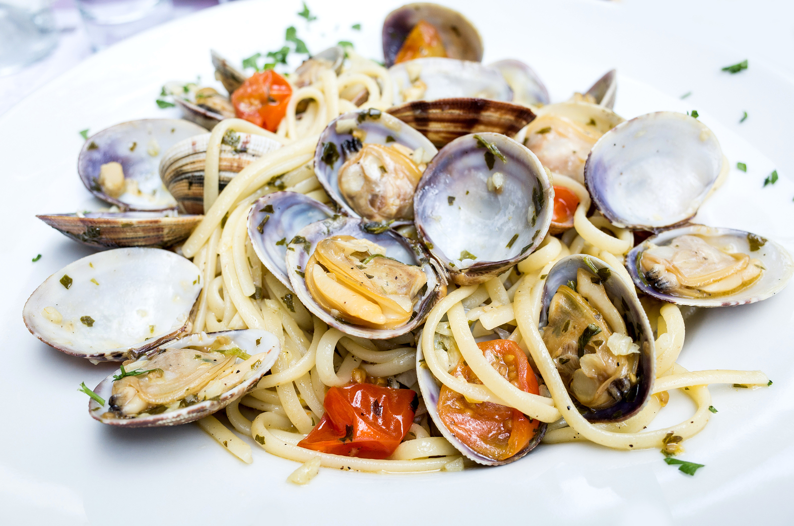 Mussels and Clams for Dinner